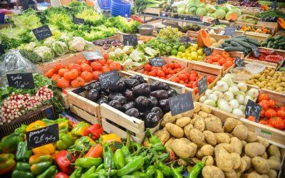 Artgerecht Basic: Was bedeutet der Begriff Makronährstoffe?